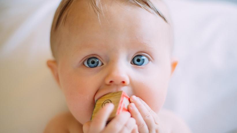 Goldener Windbeutel 2017: Alete erhält Negativpreis für Babynahrung