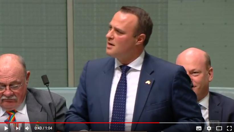 Australien: Abgeordneter beendet Rede zur Ehe für alle mit Heiratsantrag