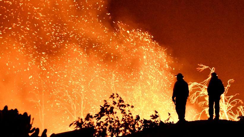 Waldbrände in Kalifornien: Behörden ordnen Zwangsevakuierung an