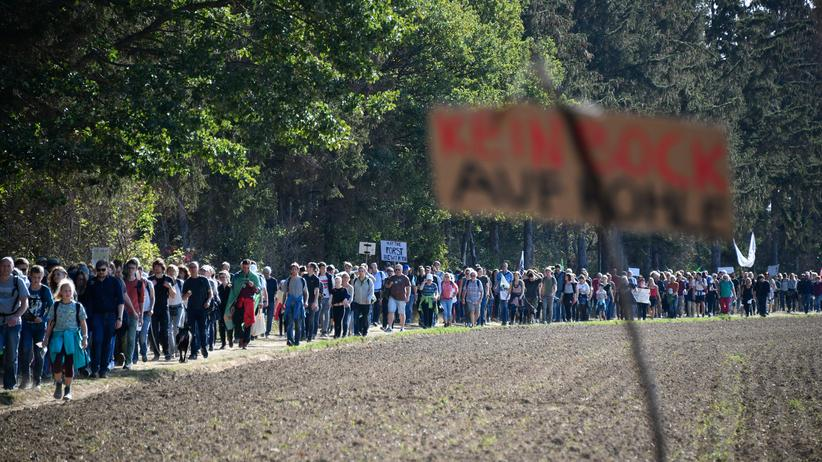 Hambacher Forst: Demonstranten am Hambacher Forst