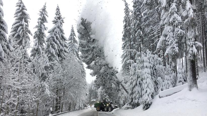Winterwetter: Eingeschneit