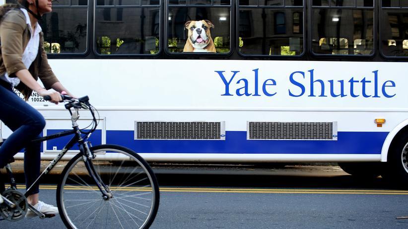 US-Eliteuni: Nach Bekanntwerden des Bestechungsskandals hat die US-Eliteuni Yale einer Studentin die Zulassung entzogen.