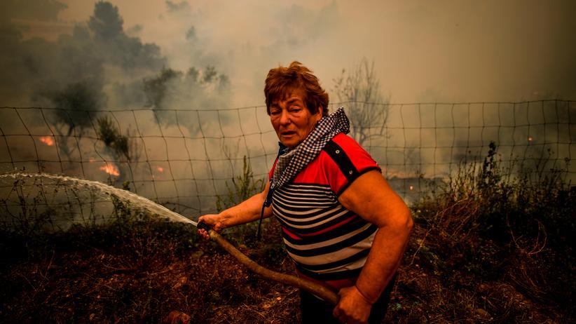 Waldbrände in Portugal: Eimer für Eimer gegen die Flammen