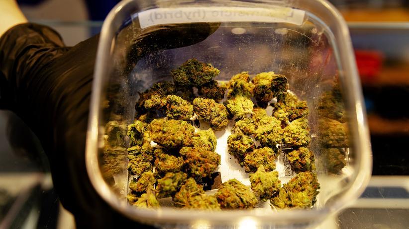 Cannabis: Das Angebot eines niederländische Coffeeshops