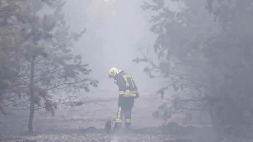 Waldbrände: Die Feuerwehr bekämpft einen Brand im brandenburgischen Treuenbrietzen, der insgesamt rund 400 Hektar Kiefernwald vernichtete. (August 2018)