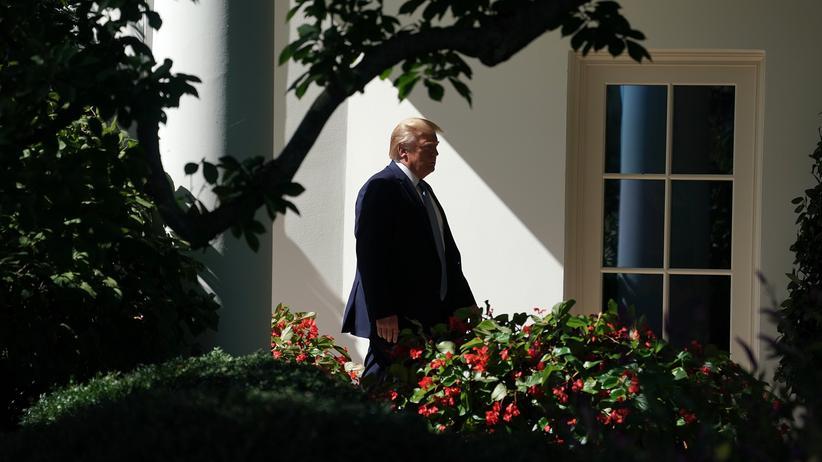 Donald Trump: Donald Trumps Erfolg verdankt er nur in geringem Maße eigenen Verdiensten, sondern zu einem großen Teil der politischen Inkompetenz seiner Gegner.