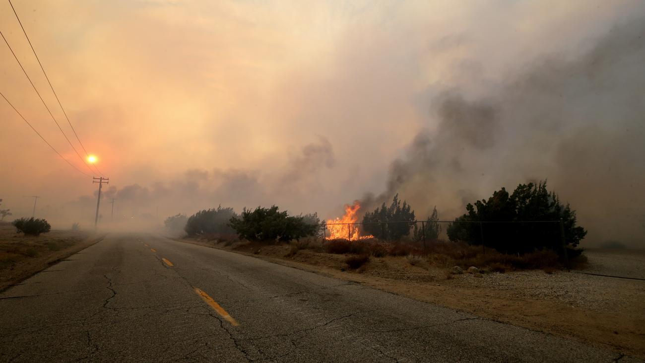 Waldbrände Usa
