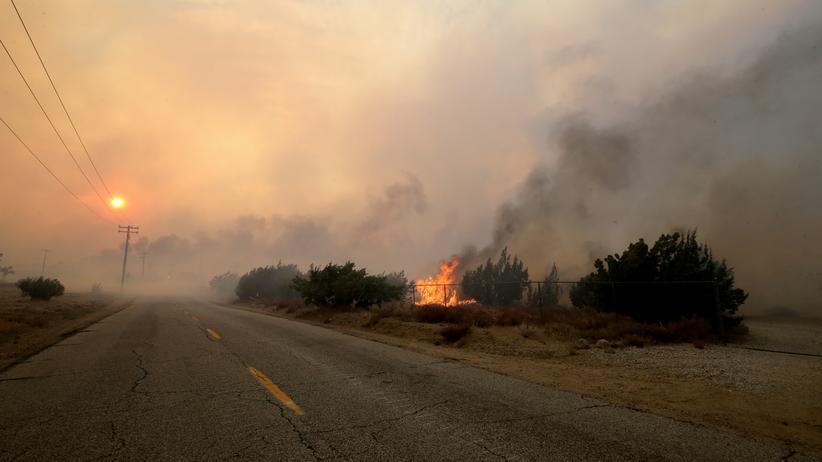 Wo Brennt Es In Kalifornien