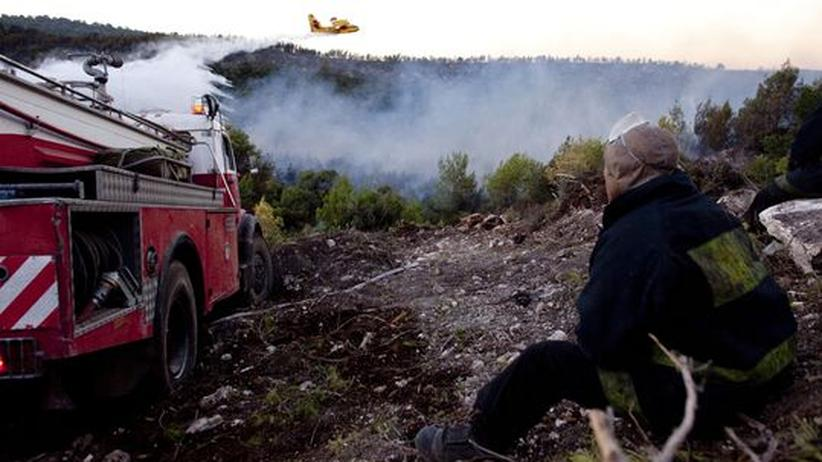 Karmel-Gebirge: Waldbrände in Israel unter Kontrolle