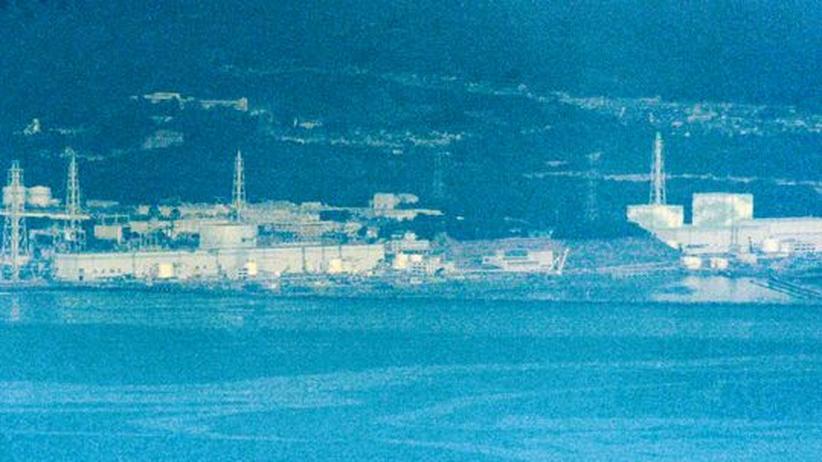 AKW Fukushima: Strahlungswerte im Meer steigen stark