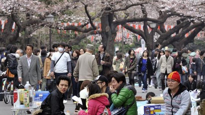 Tsunami: Japans große Verletzlichkeit