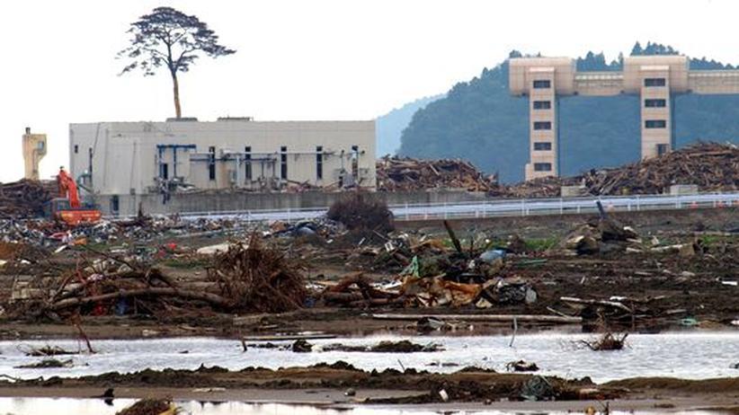 Nach dem Tsunami: Rikuzentakata, die ausgelöschte Stadt