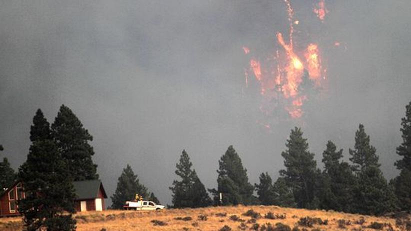 USA: Buschfeuer treiben Hunderte in die Flucht