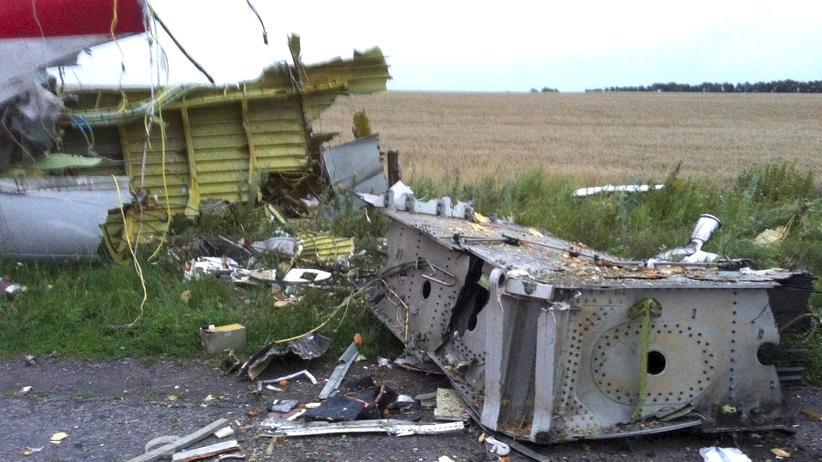 Ukraine: Absturzstelle der Malaysian Airlines MH17 im Osten der Ukraine