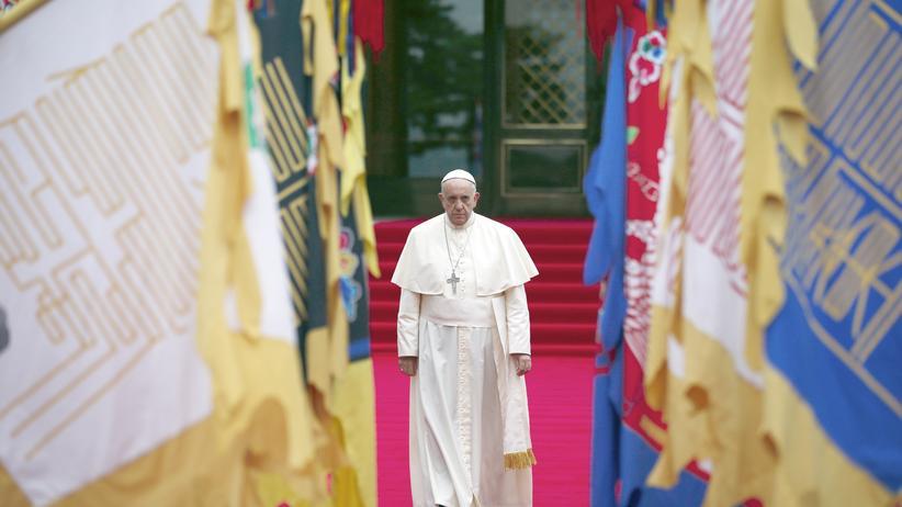 Papst Franziskus Vorwürfe sexueller Missbrauch katholische Kirche