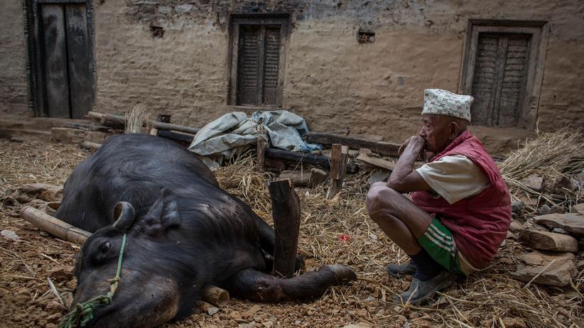 """Nepal: """"Wir brauchen keine Mayonnaise"""""""