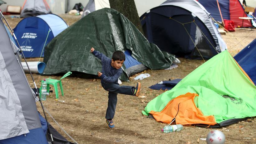 Traiskirchen: Hunderte Flüchtlinge müssen im überfüllten Erstaufnahmelager in Traiskirchen im Freien oder in Zelten schlafen.