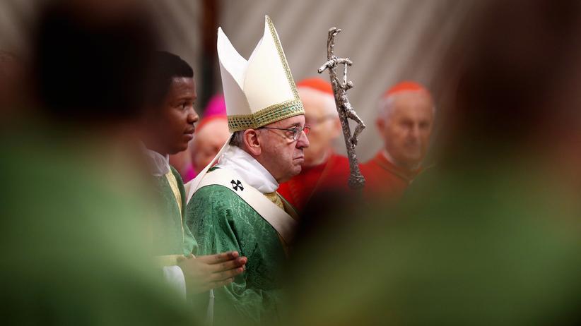 Gesellschaft, Familiensynode, Familie, Homosexualität, Vatikan, Papst