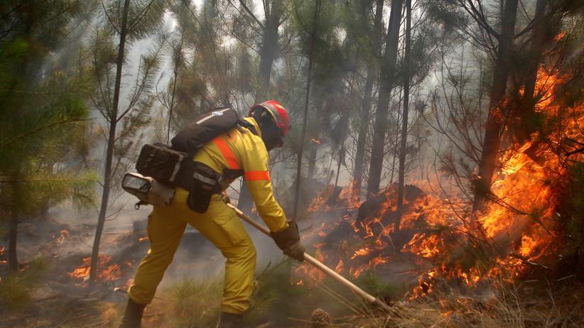 Chile: Hoffen auf Ende der Waldbrände