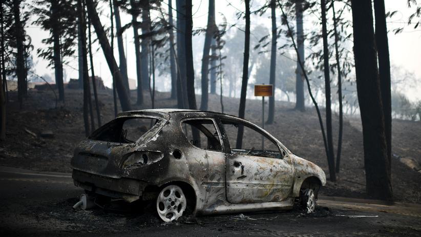 Portugal: Blitzschlag soll verheerenden Waldbrand ausgelöst haben