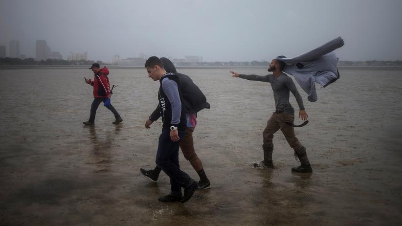 Hurrikan Irma: Starke Windböen treffen die Bucht von Tampa.