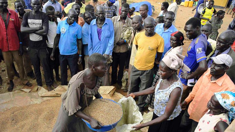 Hungersnot: Flüchtlinge aus dem Südsudan in Uganda: Ausgabe von Getreiderationen