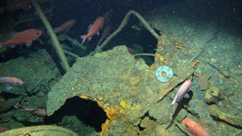 Duke-of-York-Inseln: Verschollenes U-Boot nach 103 Jahren gefunden