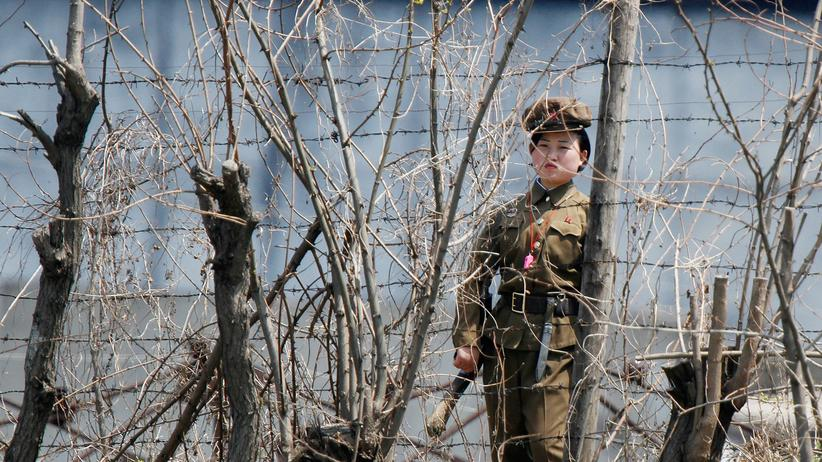 UN-Menschenrechtsrat: UN-Experte fordert Amnestie für nordkoreanische Gefangene