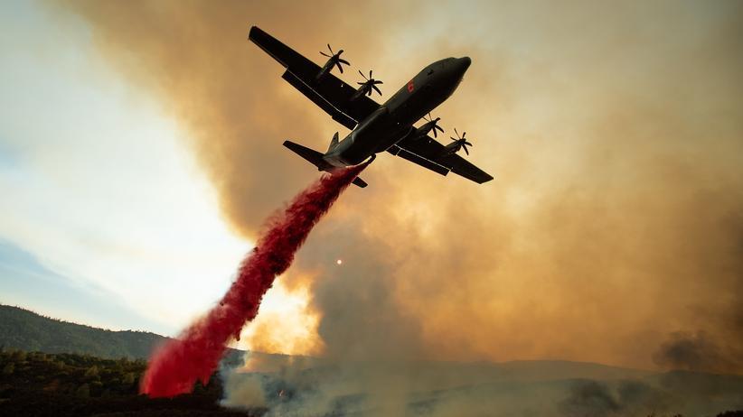 Flächenbrand: Größter Waldbrand in Kaliforniens Geschichte
