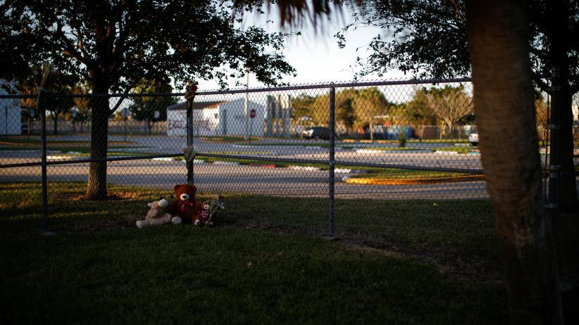 Marjory Stoneman Douglas High School: Kommission schlägt Waffentraining für Lehrer vor
