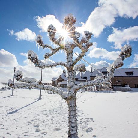 Kältewelle: Die vereisten Staaten von Amerika