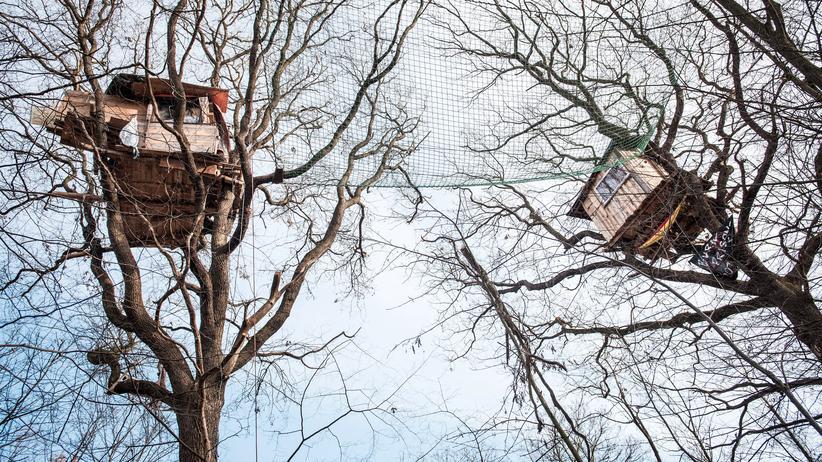 Hambacher Forst: Die Aktivisten sind zurück