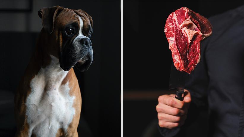 """Henry Mance: """"Leute sagen, dass sie Tiere lieben. Ich zweifle diese Tierliebe an"""""""