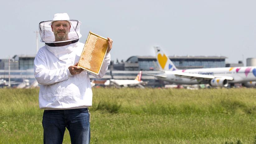 """Imker am Flughafen: """"Bisher war der Honig immer einwandfrei"""""""