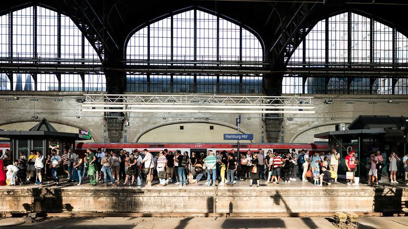 """Hamburger S-Bahn: """"Das wird eher Jahre als Monate dauern"""""""