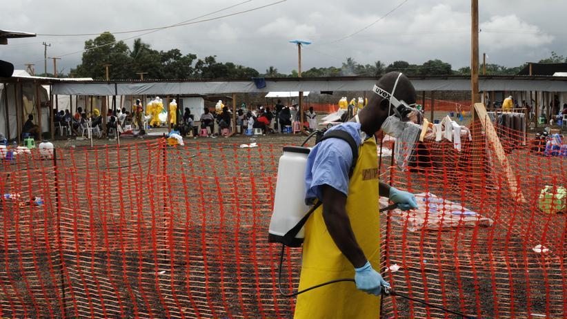 """Ebola: """"Ich musste Kranke nach Hause schicken"""""""