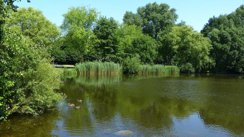 Landschaftsprogramm: Der Osten wird grün