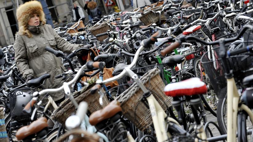 """Kopenhagen: """"Eine Fahrradspur auf der Straße ist für beide Seiten gefährlich"""""""