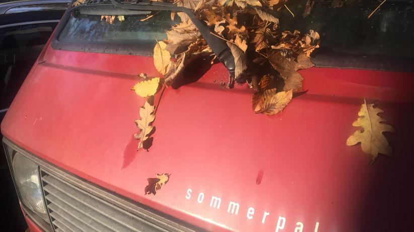 Auch im Sommerpalast wird es mal Herbst.
