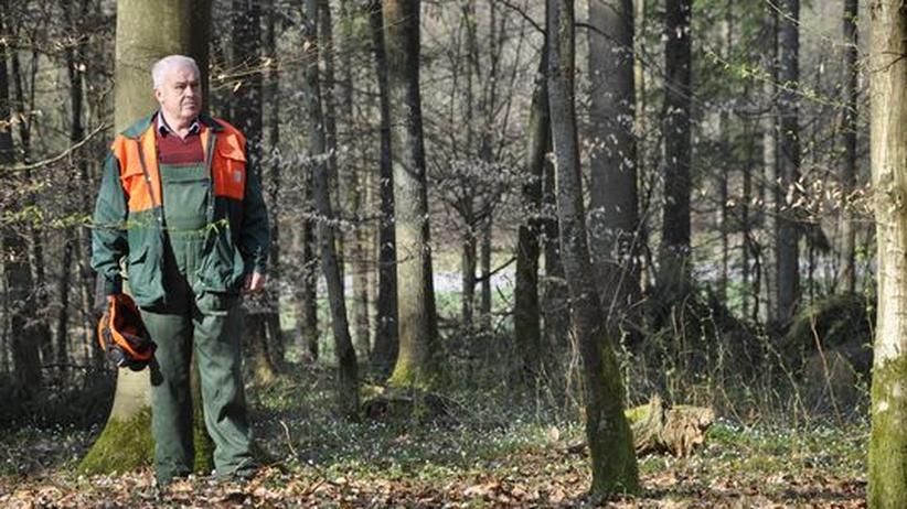 Otto Endres in dem Waldstück, wo er zuletzt gearbeitet hat