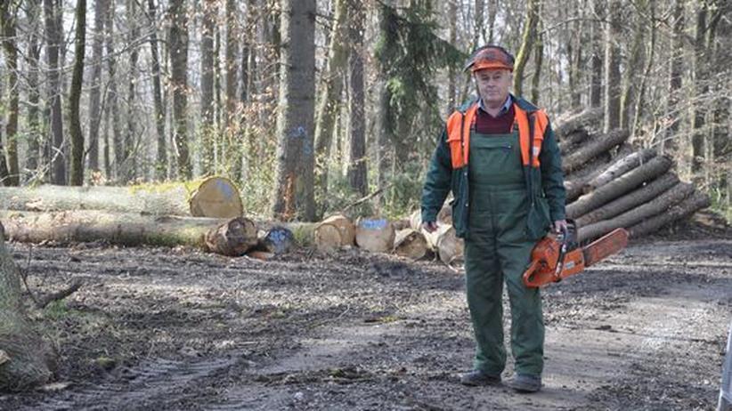 Hat sein Arbeitsleben lang schwer gearbeitet: Otto Endres im Wald