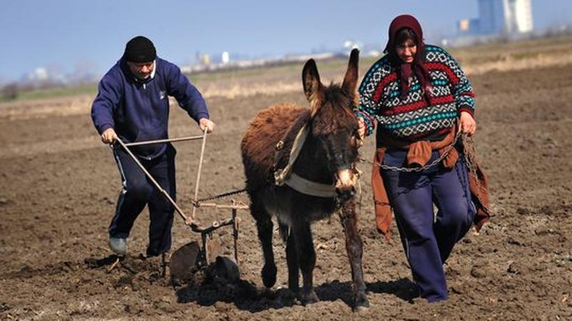 Arbeiten in Europa: Job-Hopping quer durch Europa