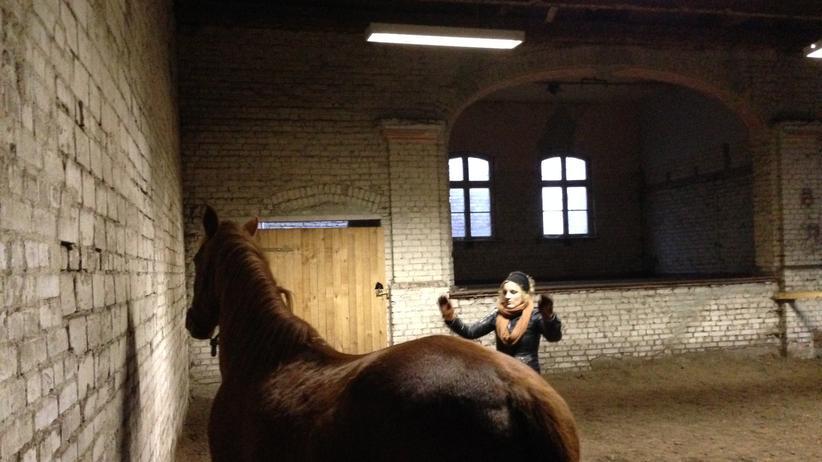 ZEIT-ONLINE-Redakteurin Tina Groll beim Kommunikationscoaching mit Pferden