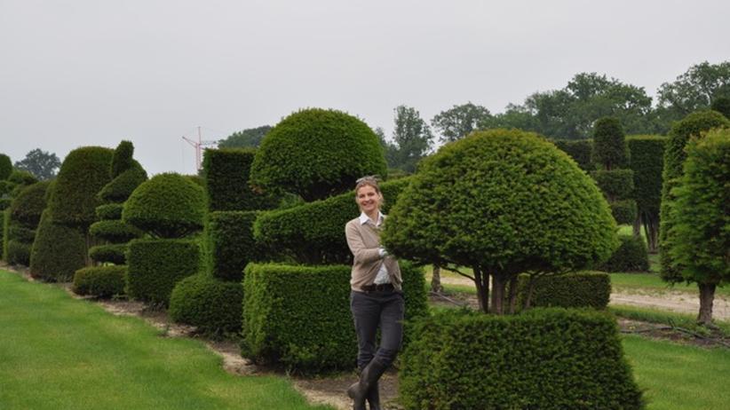 Die Baummaklerin Katharina von Ehren