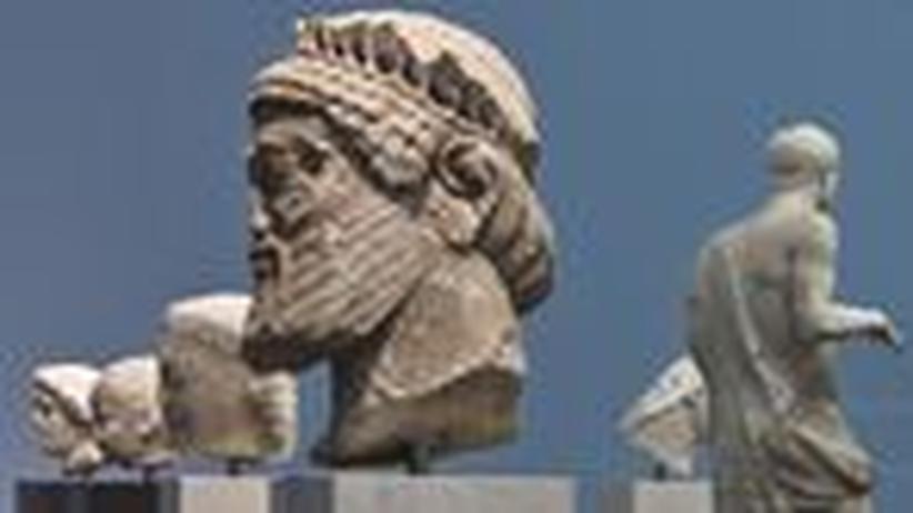 ZEIT-Museumsführer (22): Das Staunen der Venus