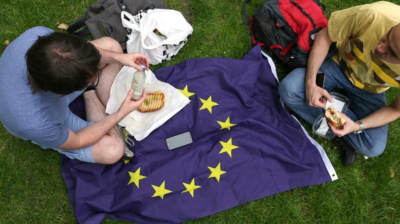 Europa: Da hat die EU doch endlich mal einen Nutzen: Brexit-Gegner beim Picknick in London