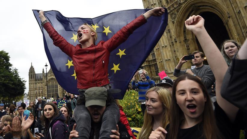 Europa: Kundgebung von EU-Befürwortern in London im Sommer 2016