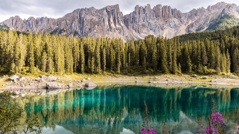 Natur: Das Leben ist größer als der Mensch