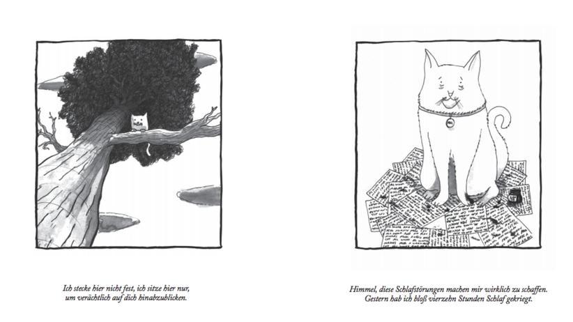 Illustrationen: Zwei Künstler blicken Katzen in den Kopf