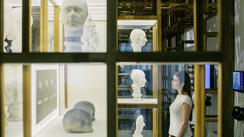 Rassismus-Ausstellung: Schädelvermessung: eine Station der Rassismus-Ausstellung im Dresdner Hygienemuseum